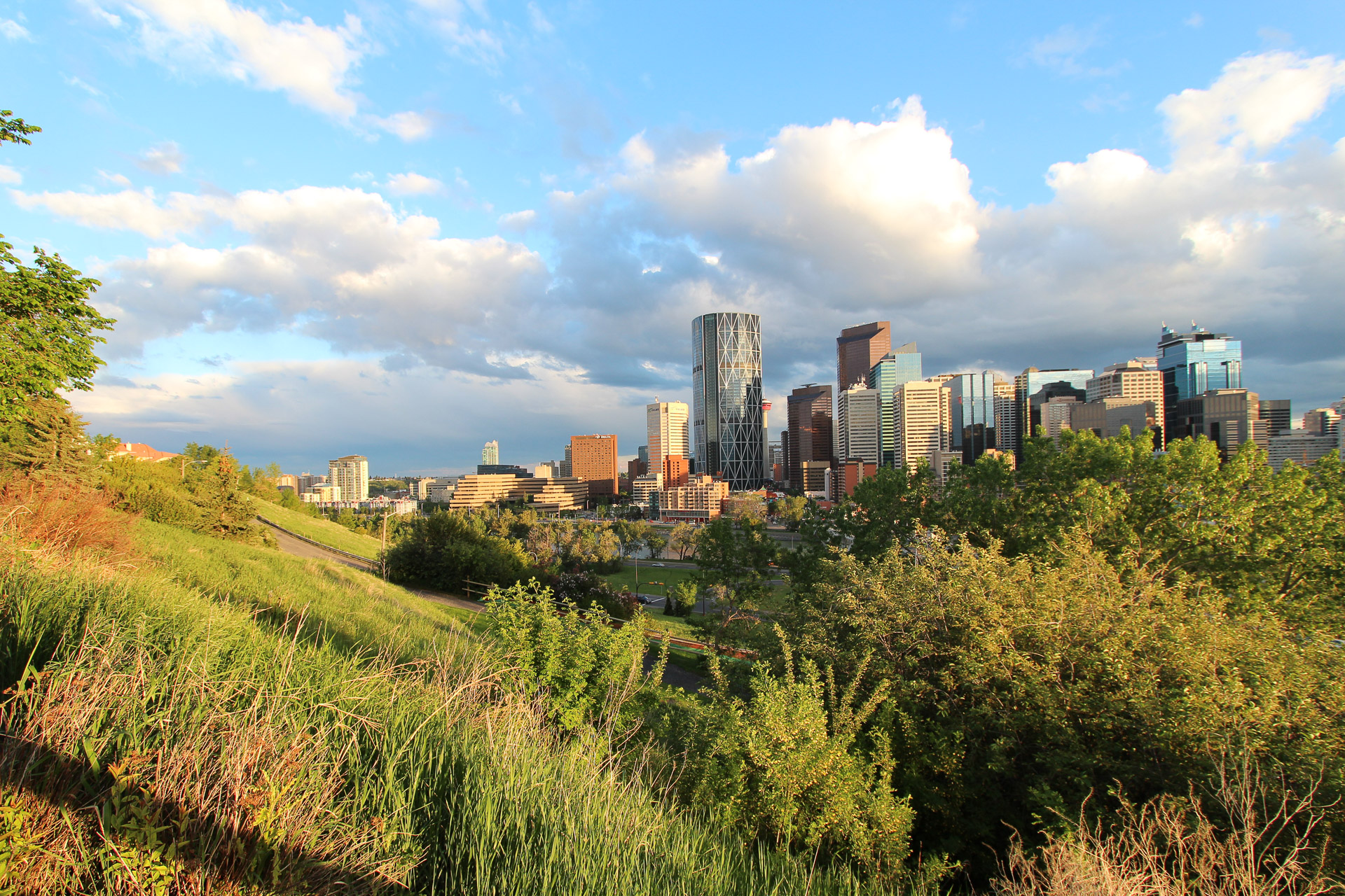 City of Calgary from Rotary Park